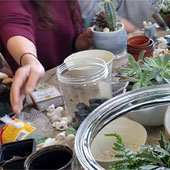 terrarium workshop at Kudos in Hudson, Wisconsin